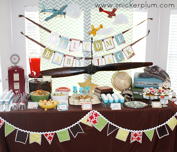 New Aviator Baby Shower Party Package